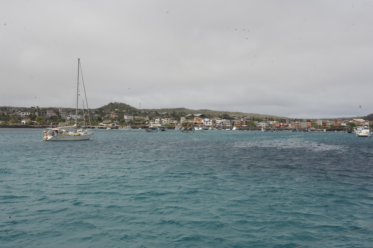 Bahia Wreck i tutejsze lwy morskie (01.07)