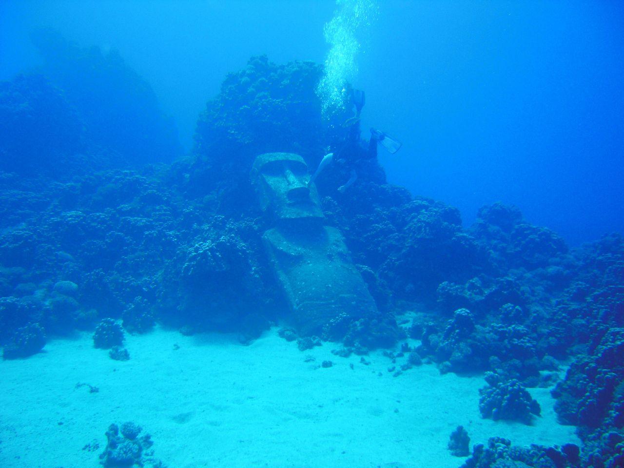 Podwodny swiat Wyspy Wielkanocnej