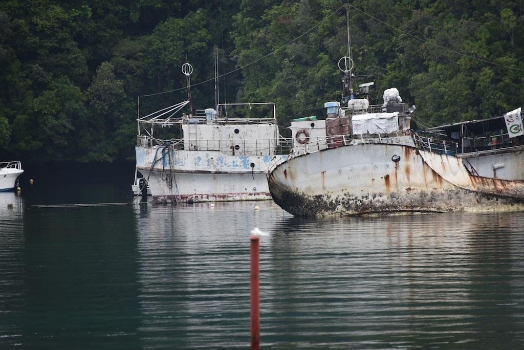 Pierwsze dni na Palau